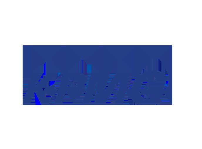 6/5(金)|KPMG FAS リストラクチャリング部門 オンラインセミナー